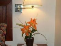 armidale_pines_flowers_2_lrg